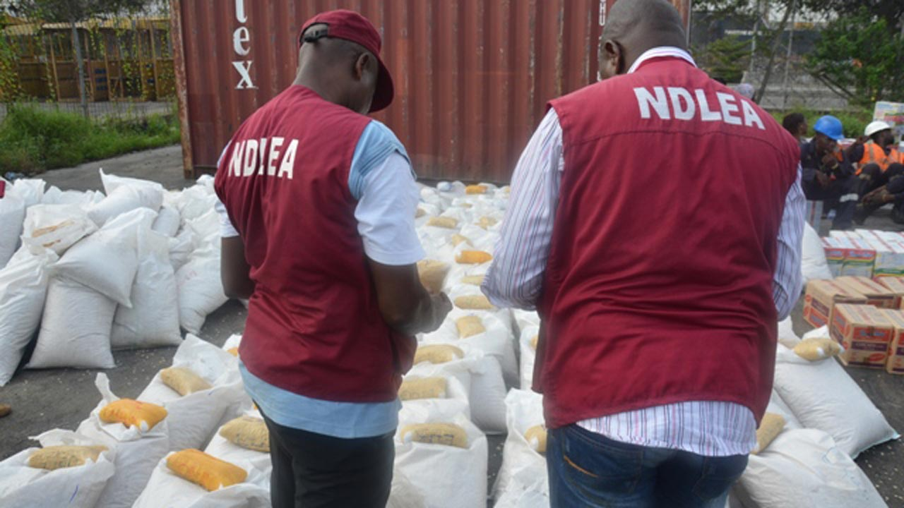 NDLEA intercepts 2412.39kg ban substances in Oyo state