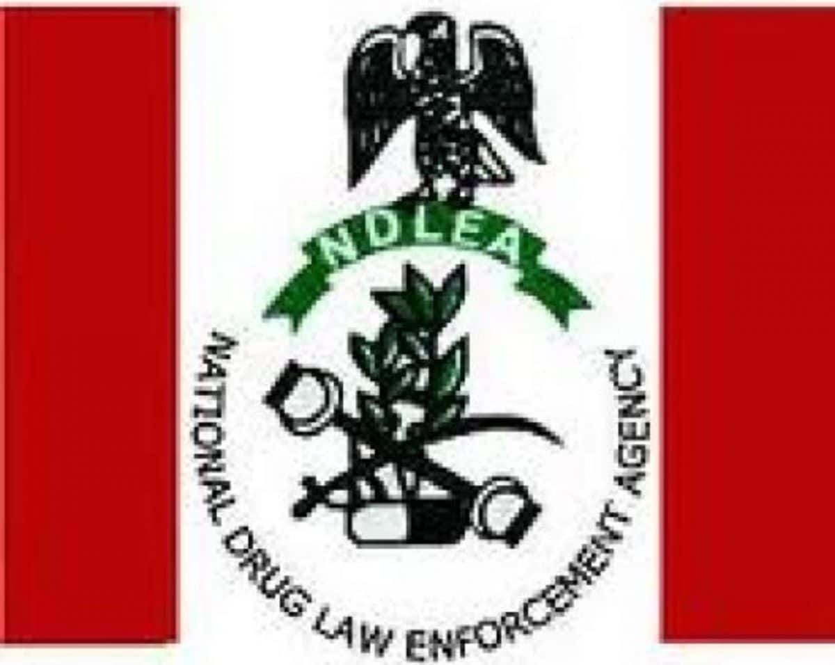 NDLEA destroys 100 tonnes of drugs, psychotropic substances in Lagos