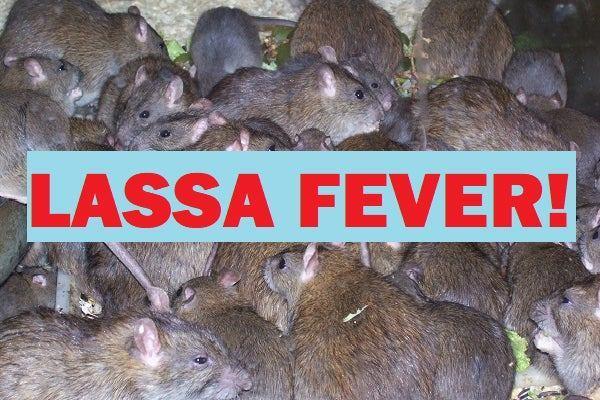 Coronavirus, Lassa Fever: Reps seek restoration of equipment procurement powers for Ministry of Health